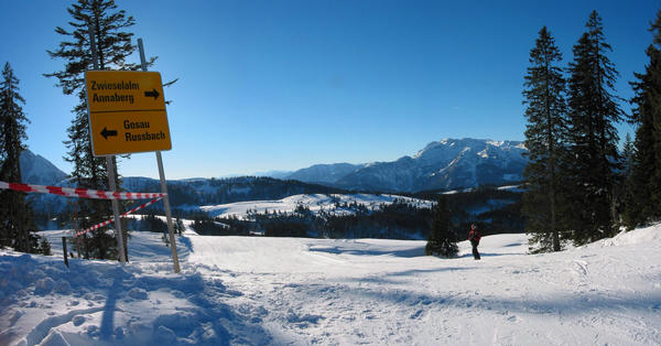 Family skiing area Dachstein West:  Falmberg panorama By the climbing out from the mountain Falmberg, T-bar lift ,  one can decide between  Russbach Gosau in the one and Zwieselalm and  Annaberg in other direction.